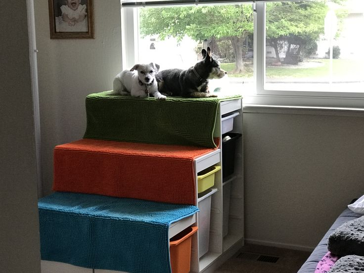 best 25 dog window seat ideas on pinterest cat window bed cat beds and diy cat bed. Black Bedroom Furniture Sets. Home Design Ideas