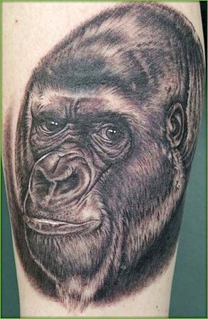Black and white gorilla | Tattoos - Crazy awesome cool wild ...