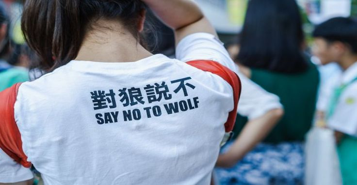 """Na camisa da estudante está escrito: Diga não ao lobo. 