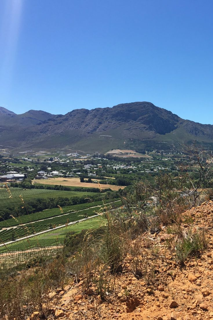 The view from the hills above the Leeu Estates, Franschhoek | The Travel Journo