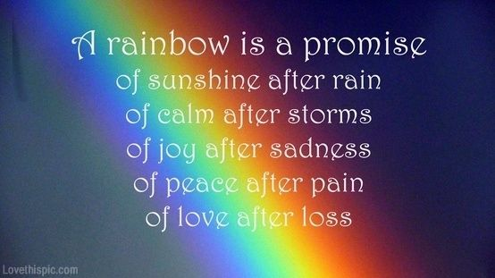A Rainbow is a promise of sunshine after rain, of calm after storms, of joy after sadness, of peace after pain, of lover after loss.... #quote rainbow #lifequote promise