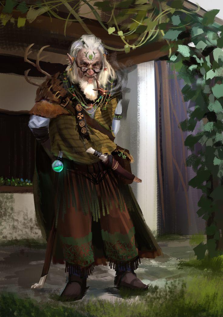 Old Gnome Druid - Pathfinder PFRPG DND D&D d20 fantasy