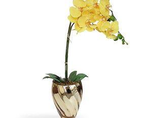 Arranjo de orquidea amarela