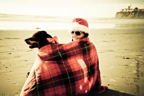 Shoot your own Christmas cards! 25 Ideas for those who love the Beach: http://beachblissliving.com/beach-christmas-card-photo-ideas/