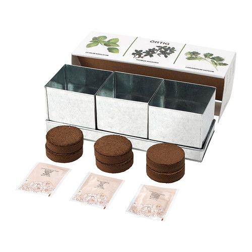 ÖRTIG Mixed kitchen herbs 1 tray 3 pots IKEA Contains everything you need to grow 3 different herbs.