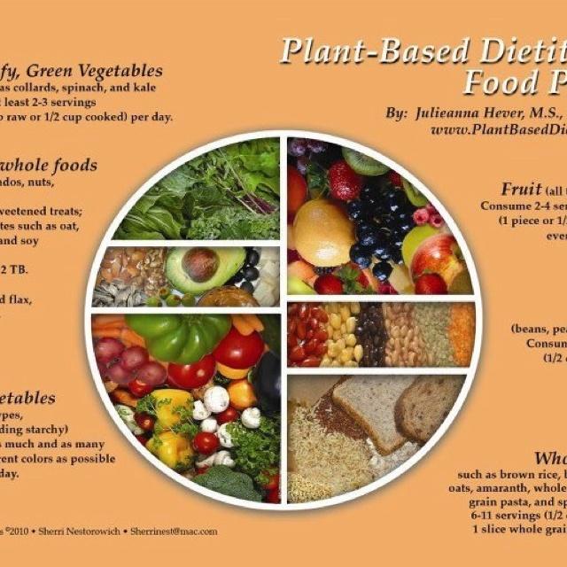 Plant based diet! I've never felt better in my life!