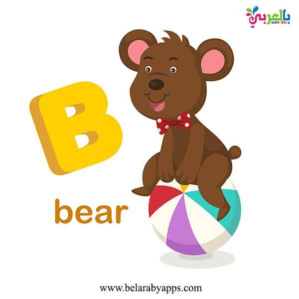 تعليم حروف اللغة الانجليزية بالصور للاطفال Pdf Abc Flash Cards بالعربي نتعلم Lettering Alphabet Letter B Lettering