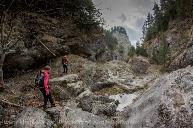 Prosiecka Valley in the Choc Mountains #hiking #mountains #Slovakia  www.simplycarpathians.com