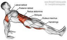 High reverse plank. An isolation push exercise. Muscles worked: Gluteus Maximus Stabilizers: Erector Spinae, Hamstrings, Rectus Abdominis, Obliques, Posterior Deltoid, and Lateral Deltoid. Muscles are exercised isometrically.