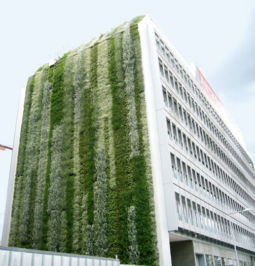 340 best images about vertical gardens on pinterest for Vertical green wall