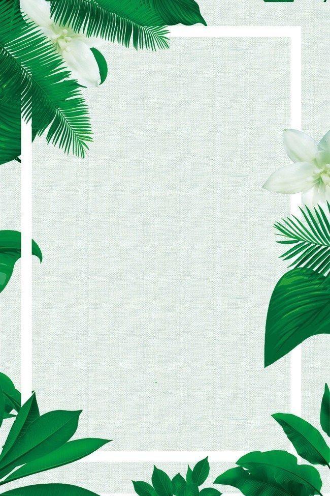 Fon Dlya Storis Tropical Background Tropical Wallpaper Iphone Background Wallpaper