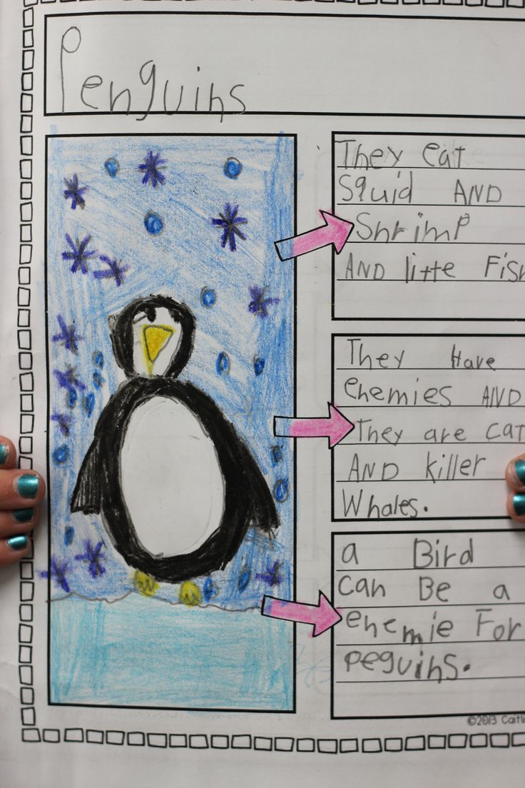 Nonfiction 'All About Penguins' book