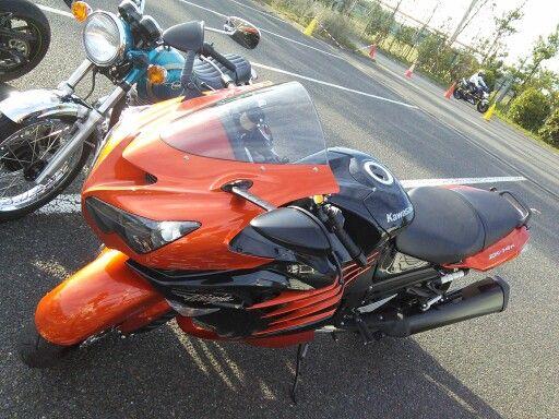 orange and black are vivid