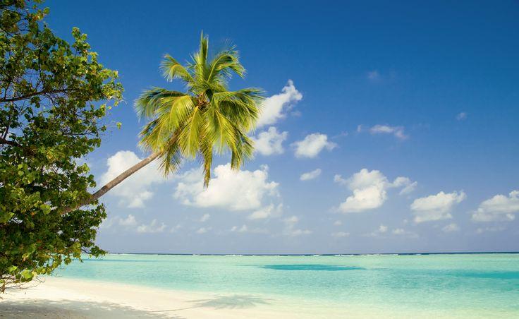 Malediven #malediven #badeferien #hotelplan