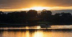 "TWA-0055086 © WestPix Graeme Payne of Canning Vale heading out for an early morning boat trip on the Canning River in Riverton. Graeme was not deterred by the cold morning ""I enjoy getting onto the river and grab a coffee along the way"" he said. Pic Mogens Johansen, The West Australian"