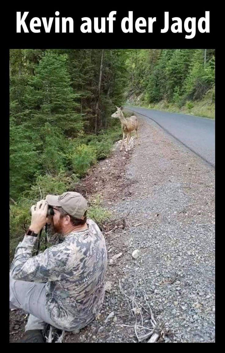 Kevin lustig witzig Sprüche Bild Bilder. Auf der Jagd