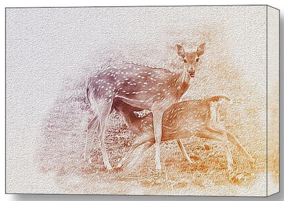 Chital Or Spotted Deer Nursing her fawn by ManjotNatureWild, $189.00 On WRAPPED CANVAS