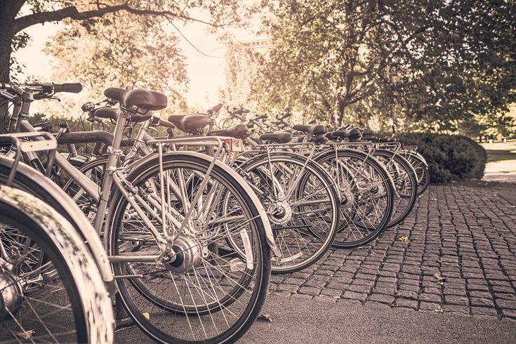 Día Mundial de la Bicicleta 2016