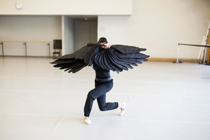 First Soloist Jenna Savella rehearses for Le Petit Prince with the wild bird wings. Photo by Karolina Kuras.