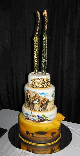 #Safari Engagement #cake by Susie Araya by snarkygurl, via Flickr