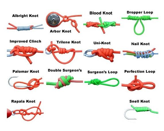 Fishing knots camp outdoor pinterest knots fishing for Types of fishing knots