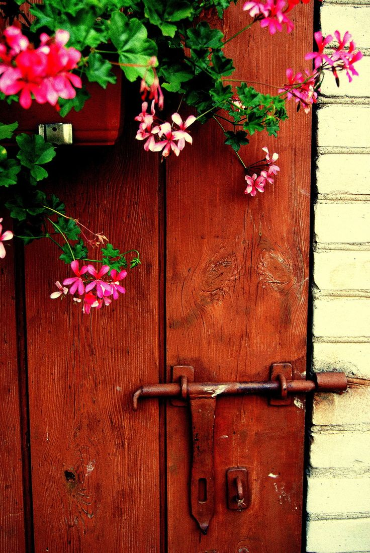 17 Best Images About Threshold │whimsical Doors Amp Gates On