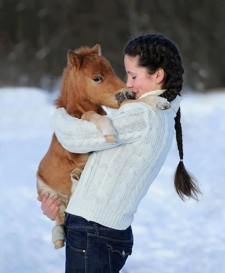 This Is The Picture That Will Turn You Into A Mini-Horse Owner… Who Doesn't Want To Hold A Horse?!