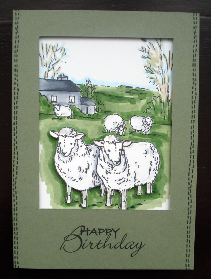 "This Gorgeous handmade card was made by Georgina Ford using ""Sheep in the Meadow"" Foam Mounted Stamp as seen on Create & Craft on Monday 21st October 3pm & 6pm"