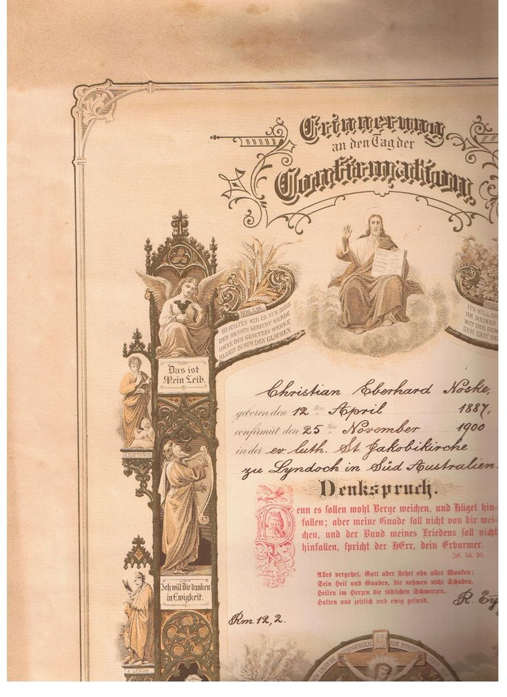 Christian Noske part of Christening Certificate, very large scroll. Collection From Great Aunt