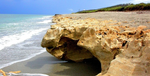 Blowing Rocks Preserve- Jupiter Island