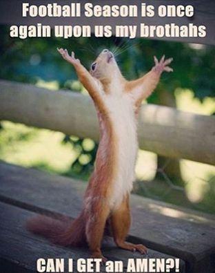 Detroit Lions!