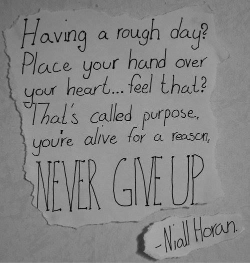 Niall...please stop giving me feels of inspiration and making me drown in my own tear water...please stahp