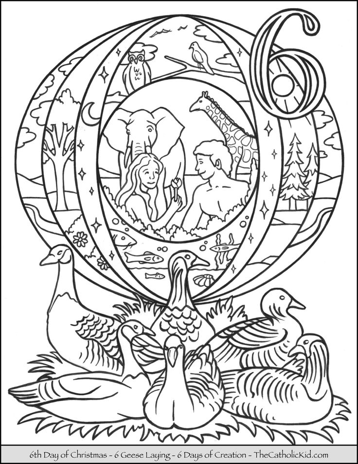 28 best Catholic Saints - Coloring Pages images on Pinterest ...