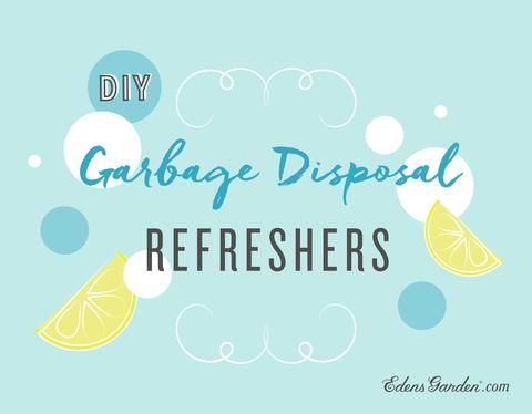 Garbage Disposal Refreshers DIY – Edens Garden