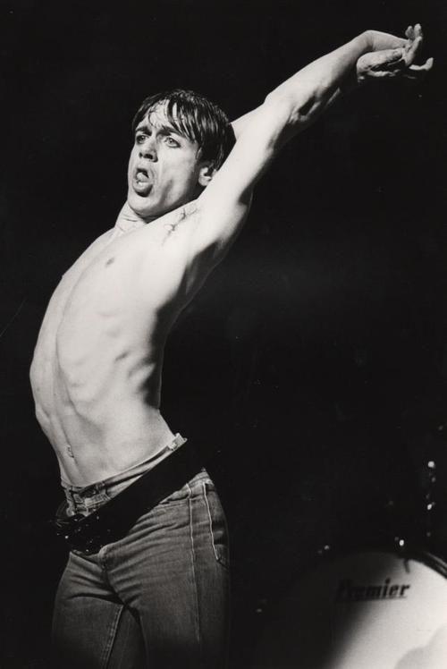 Iggy Pop, photo by Chalkie Davies, Birmingham, 1977 via