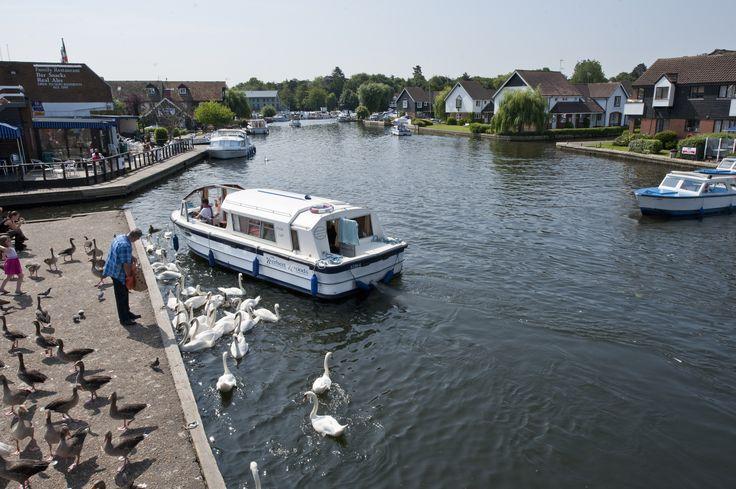 Boating Wroxham
