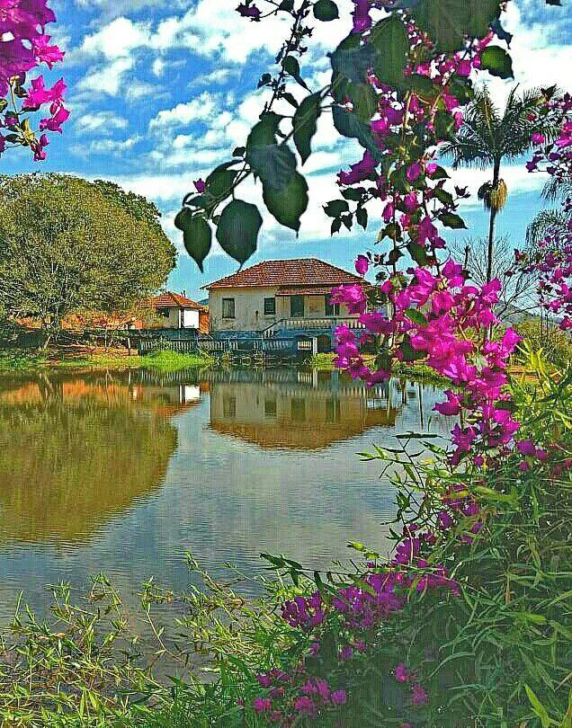 (¯`´¯) *Bom dia!* ¸¸`•.¸.•´ ⁀⋱‿✫  Lá naquele cantinho do sertão Existe uma casinha muito feliz Ela é vizinha de um belo riacho A natureza reina naquele chão. O céu infinito que faz sonhar... As bonitas flores a perfumar... Sertanejo agradece aos céus Pela oportunidade de ali morar.