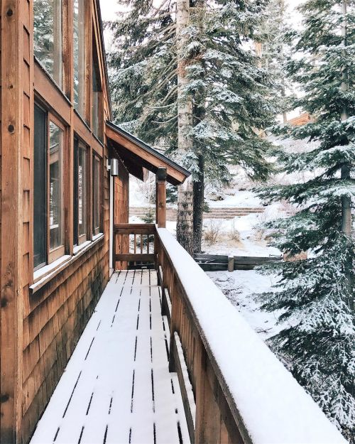 snowy days in cabins | where I want to be