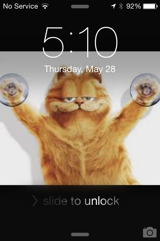 Funny screen saver