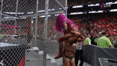 Hell in a Cell 2016 Charlotte vs. Sasha Banks
