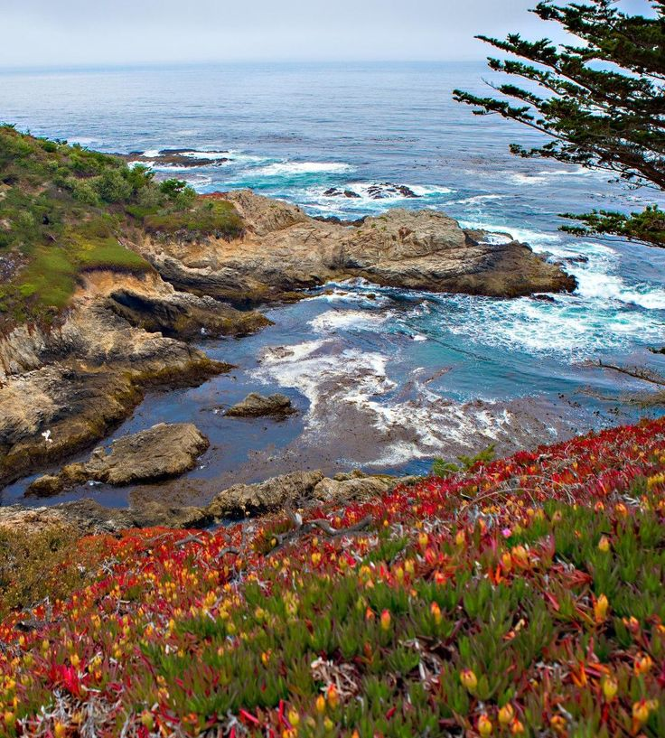 17 Mile Drive, Carmel, California