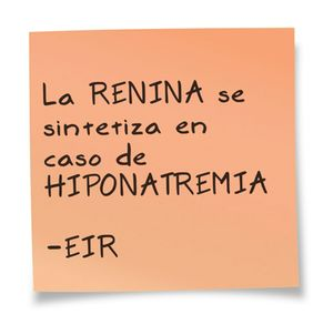 EIR La Renina se sintetiza en caso de Hiponatremia