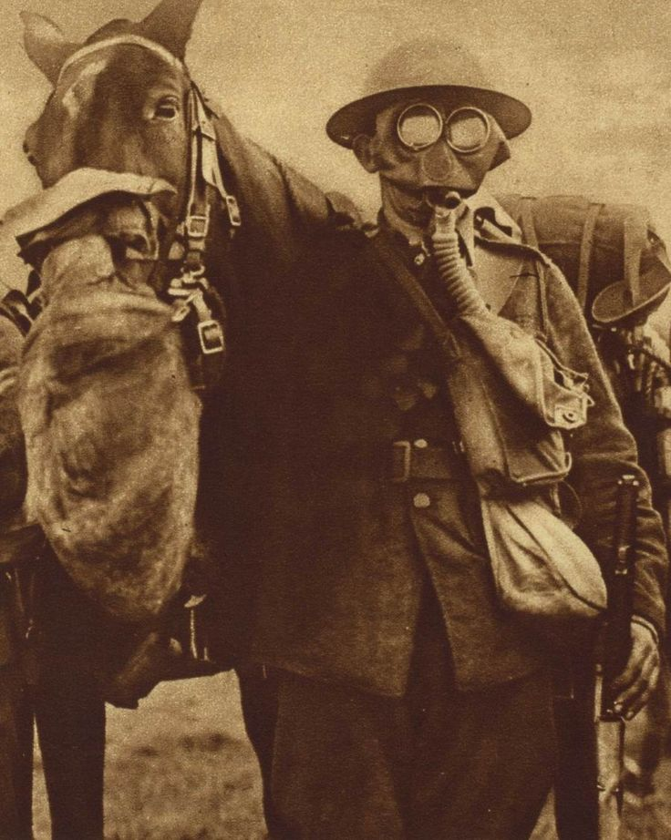 """WW1 may have ushered in """"modern"""" warfare, but horses were still used.  Here's a photo of a horse and his rider outfitted to protect them from that dastardly new weapon, poison gas.     Another picture from the Photos of the Great War Archive.  http://www.gwpda.org/photos/greatwar.htm  #WW1, #history, #Animals"""