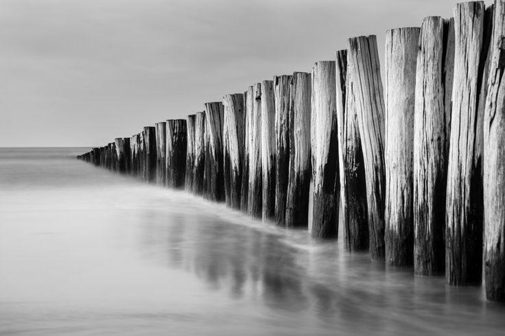 Nederlandse kust