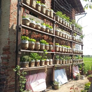 Here how i made my vertical vegetable garden, starting from used big water bottles as planters. An automatic watering system keep the right moisture, ...