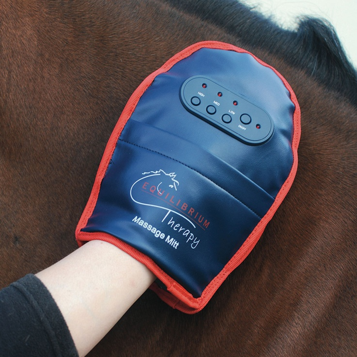 46 Best Equine Massage Amp Stretching Images On Pinterest
