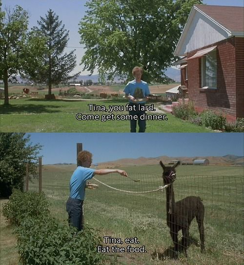 I think I just laughed way too hard at this....: Laughing, Fat Lard, Best Friends, Girls Names, Napoleondynamit, Funny Stuff, Movies Line, Napoleon Dynamite, So Funny