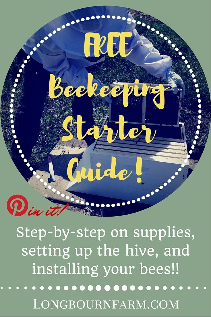 Are you interested in keeping bees but unsure how to start or even what beekeeping supplies you'd need to purchase? This beekeeping guide is for you! It's a step-by-step beekeeping guide to what supplies you'll need, how to set up your beehive, and how to install your queen and bees when they arrive. It's the ultimate beekeeping starter guide!