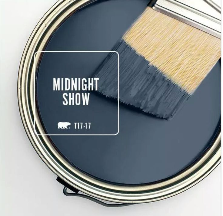 Behr paint. Midnight Show - absolutely IN LOVE with this color!