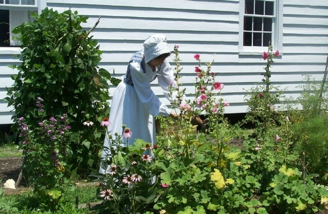 The charming Leffers Garden depicts a typical colonial garden that would have been found in the 1800's. The garden is maintained by the NC Cooperative Extension Service Master Gardener Volunteers of Carteret County for use as an educational tool. (Photo by Beaufort Historic Site)